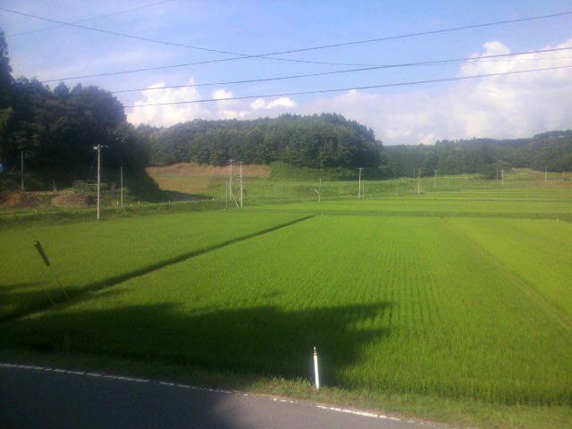 福島です(^^)v
