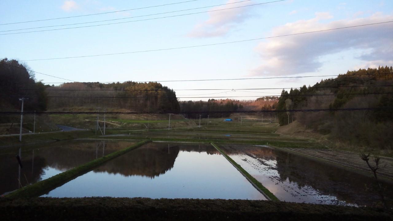 穏やかな田園風景